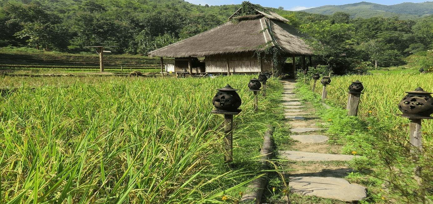 l'agriculture au Laos et une maison typique