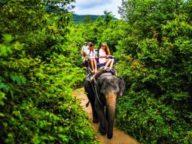 Balade à dos d'elephant durant notre circuit Birmanie