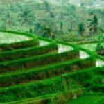 Les îles incontournables en Indonésie